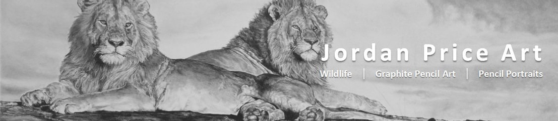JORDAN PRICE | WILDLIFE | PENCIL ART